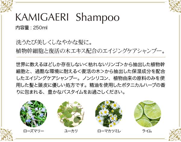 洗うたび美しくしなやかな髪に。植物幹細胞と復活の木エキス配合のエイジングケアシャンプー
